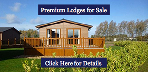 View ALL lodges for sale at Searles